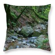 Redwood Creek Art Throw Pillow