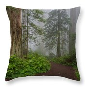Redwoods Rising In Fog Throw Pillow