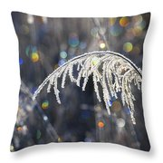 Reed With Frost And And Color Throw Pillow