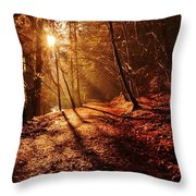 Reelig Sun Throw Pillow