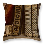 Reference Throw Pillow