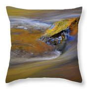 Reflected Autumn Color Throw Pillow