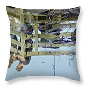 Reflected In A Memory Throw Pillow