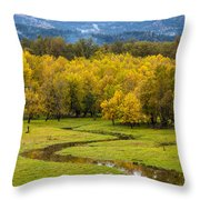 Reflected Seasons Throw Pillow