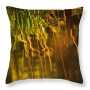 Reflecting On A Summer Morn Throw Pillow