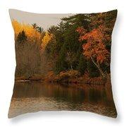 Reflecting On Autumn Throw Pillow