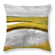 Reflecting Pools Throw Pillow