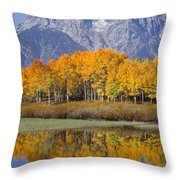 Reflection At Oxbow Bend Throw Pillow
