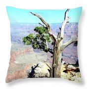Reflection In The Canyon Throw Pillow