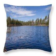 Reflection Lake Throw Pillow
