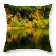 Reflection Of Autumn Colors Throw Pillow