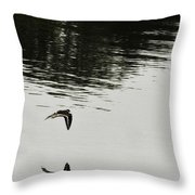 Reflection Of Flight Throw Pillow
