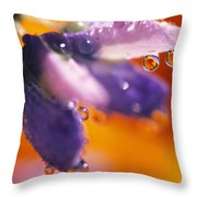 Reflection Of Flower In Dew Drops Throw Pillow