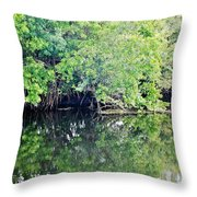 Reflection On The North Fork River Throw Pillow