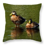 Reflection On The River Throw Pillow