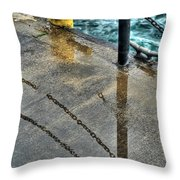 Reflections After The Rain Throw Pillow