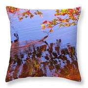 Reflections And Currents Throw Pillow