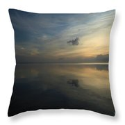 Reflections In The Sound Throw Pillow