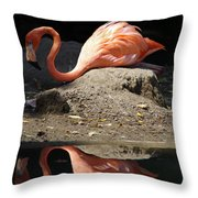 Reflections Of A Flamingo Throw Pillow