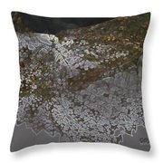 Reflections Of A Lacy Leaf Throw Pillow