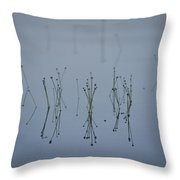 Reflections Of Delicate Aquatic Plants Throw Pillow