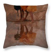 Reflections Of India Throw Pillow