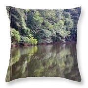 Reflections On Aldridge Lake Throw Pillow