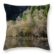 Reflections On Marshall Pond Throw Pillow