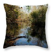 Reflective River Thoughts Throw Pillow