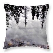 Reflective Wetlands Throw Pillow