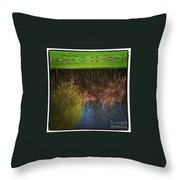 Reflex   Throw Pillow
