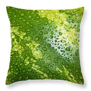 Refreshing Watermelon Throw Pillow