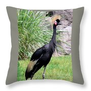 Regal Bearing Throw Pillow