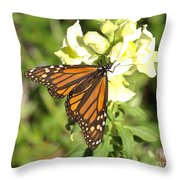 Monarch Butterfly Feeding On A Cluster Of Yellow Flowers Throw Pillow