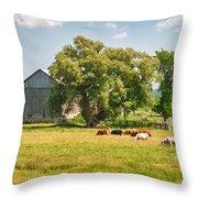 Reive Blvd Barn 15059c Throw Pillow