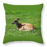 Relaxin Throw Pillow