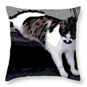 Relaxing On The Steps Throw Pillow