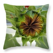 Reluctant To Bloom Throw Pillow