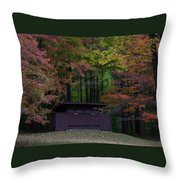 Remember These Throw Pillow