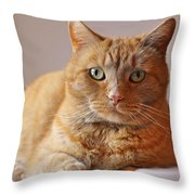Remo Resting Throw Pillow