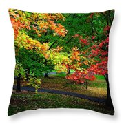 Reno Park - Autumn Throw Pillow