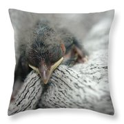 Rescued  Throw Pillow by Jeff Swan