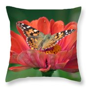 Resting Area Throw Pillow