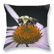 Resting Bee Squared Throw Pillow