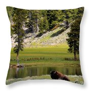 Resting Buffalo By Pond Throw Pillow