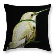 Resting For Migration Throw Pillow