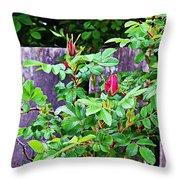 Resting Rosebuds Enhanced Throw Pillow