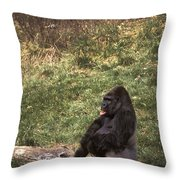 Resting Silver-back Throw Pillow
