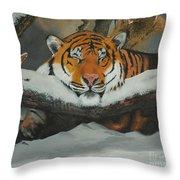 Resting Tiger Throw Pillow