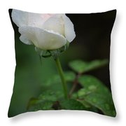 Reverence And Humility Throw Pillow